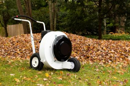 Leaf removal by Jason's Quality Landscaping, Inc..