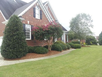 Lawn care in Apex NC by Jason's Quality Landscaping, Inc..